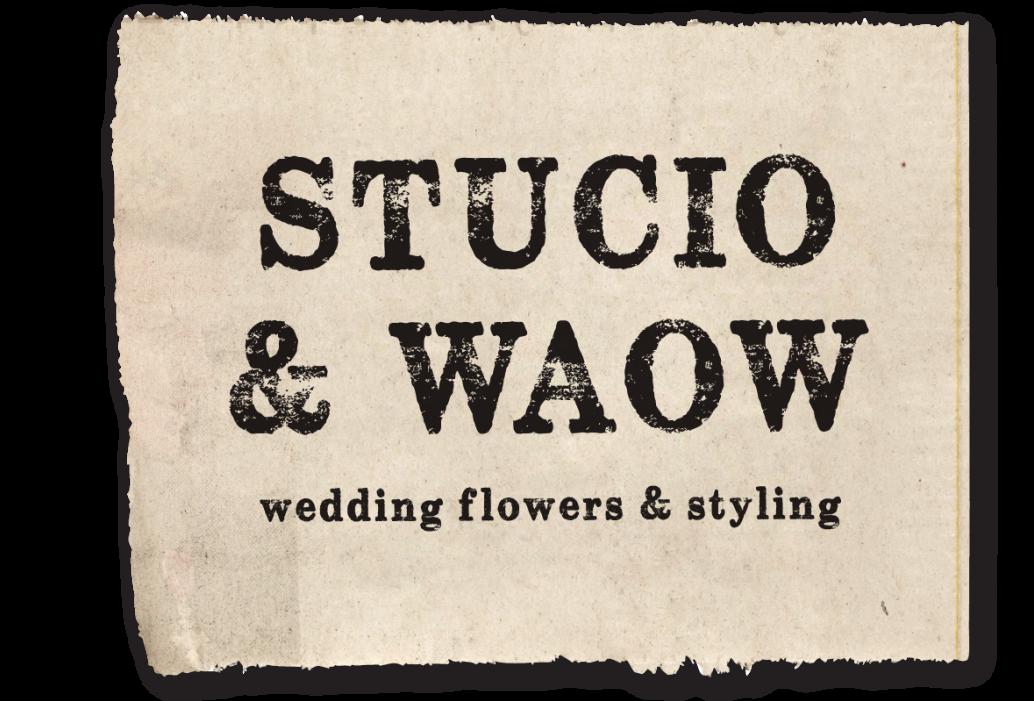 Stucio & Waow Logo.